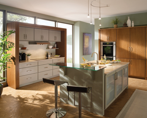 Cabinetry in jacksonville premium kitchen cabinetry for Avalon kitchen cabinets
